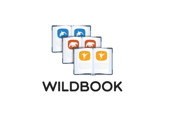 wildbook